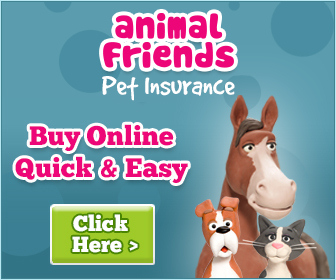 animal_friends_banner1.jpg
